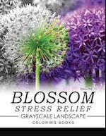 Blossom Stress Relief Grayscale Landscape Coloring Books Volume 1