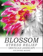 Blossom Stress Relief Grayscale Landscape Coloring Books Volume 2