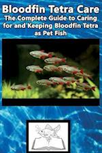 Bloodfin Tetra Care