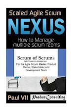 Scaled Agile Scrum