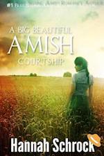 A Big Beautiful Amish Courtship
