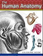 The Human Anatomy Coloring Book
