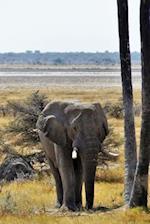Elephant with Tusks Animal Journal
