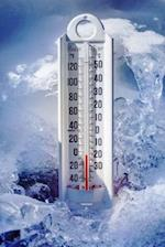 Ice Cold Thermometer in Snow Journal