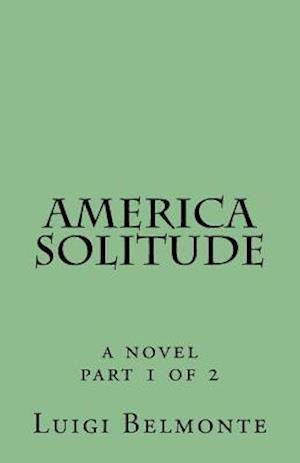 Bog, paperback America Solitude af Luigi Belmonte