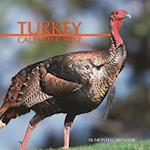 Turkey Calendar 2017