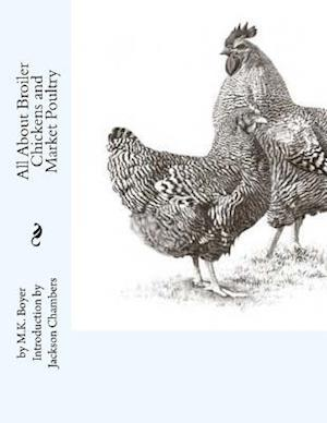 Bog, paperback All about Broiler Chickens and Market Poultry af M. K. Boyer