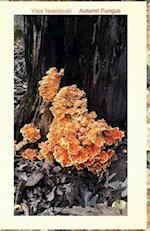 Your Notebook! Autumn Fungus