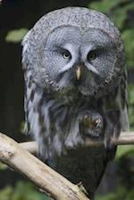 Intense Owl Bird Journal af Cs Creation