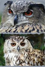 Owl Eyes af Express Yourself Journals