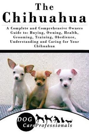 The Chihuahua af Dog Care Professionals