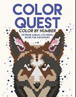 Color Quest Color by Number