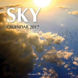 Bog, paperback Sky Calendar 2017 af David Mann