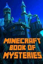 Minecraft af Steve Kid