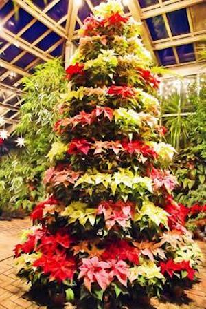 Bog, paperback Poinsettia Plants Stacked Into a Christmas Tree Display af Unique Journal