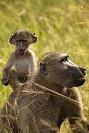 Bog, paperback Chacma Baboon and Baby Journal af Cool Image