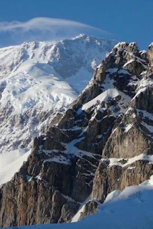 Bog, paperback Website Password Organizer Exposed Rock on MT McKinley in Alaska af Unique Journal