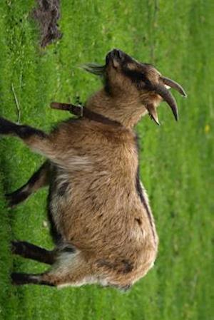 Bog, paperback A Billy Goat Kid Strolling Through the Grass af Unique Journal