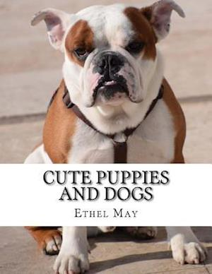 Bog, paperback Cute Puppies and Dogs af Ethel May