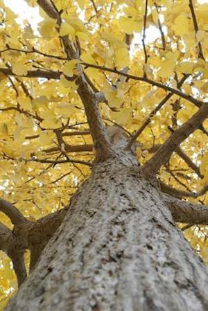 Bog, paperback Yellow Leaves on a Gingko Tree in Autumn af Cs Creations