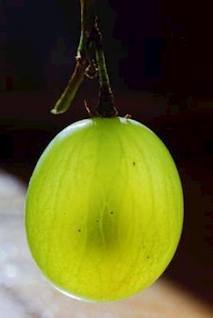 Bog, paperback Green Gooseberry Fruit Journal af Cs Creations