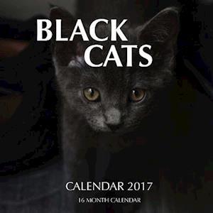 Bog, paperback Black Cats Calendar 2017 af David Mann