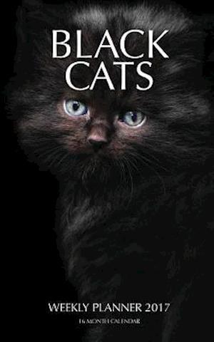 Bog, paperback Black Cats Weekly Planner 2017 af David Mann