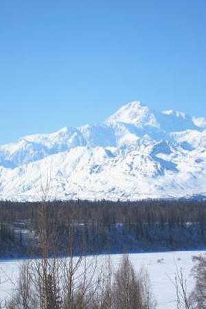 Bog, paperback Website Password Organizer MT McKinley Tallest American Mountain af Unique Journal
