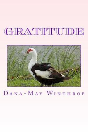 Bog, paperback Gratitude af Dana-May Winthrop