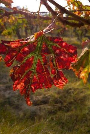 Bog, paperback Red Vineyard Leaf in Autumn Journal af Cs Creations
