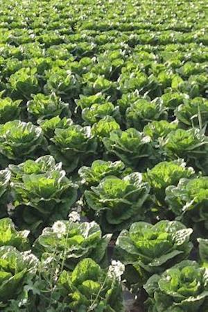 Bog, paperback A Field of Lettuce Plants Journal af Cs Creations