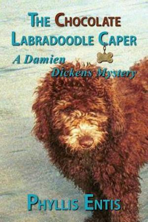 Bog, paperback The Chocolate Labradoodle Caper af Phyllis Entis