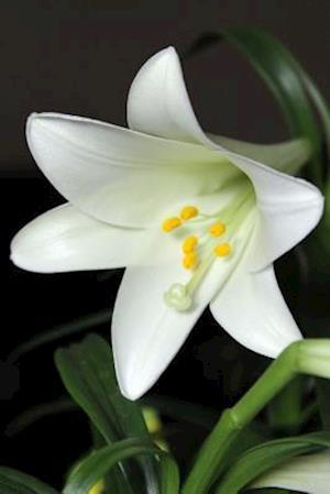 Bog, paperback White Easter Lily Flower Journal af Cs Creations