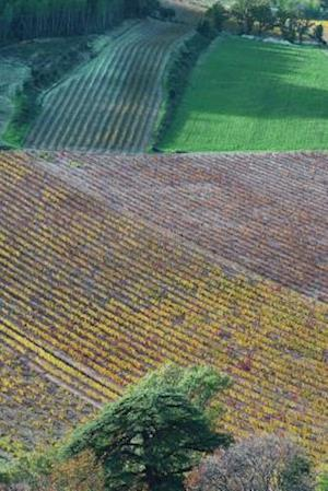 Bog, paperback Aerial View of Fields in Provence France Journal af Cs Creations