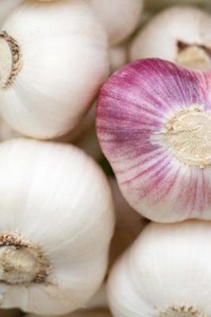 Bog, paperback Bulbs of Garlic Cooking Journal af Cs Creations