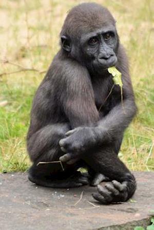 Bog, paperback Adorable Baby Gorilla Journal af Cs Creations