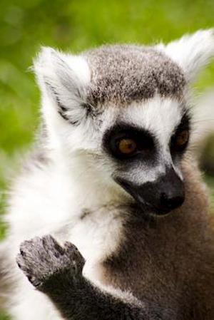 Bog, paperback Ring-Tailed Lemur Portrait Journal af Cs Creations