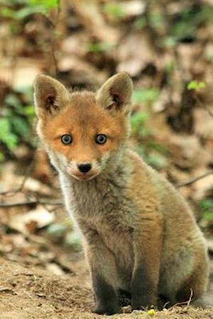 Bog, paperback Baby Fox Animal Journal af Cs Creations