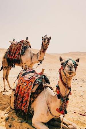 Bog, paperback Two Camels in the Desert Journal af Cs Creations