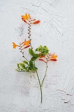 Bog, paperback Crocosmia Blossoms Journal af Cs Creations