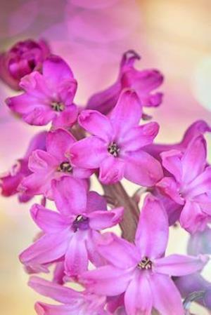 Bog, paperback Dreamy Pink Hyacinths Flower Journal af Cs Creations