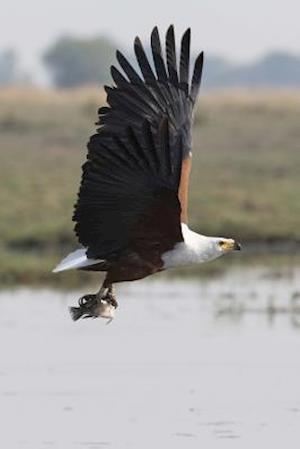 Bog, paperback African Fish Eagle Goes Fishing Journal af Cool Image