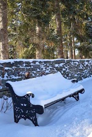 Bog, paperback A Winter Day in the Park Journal af Cs Creations