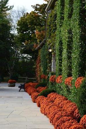 Bog, paperback Orange Mums in an Autumn Landscape af Cs Creations