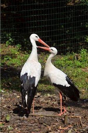 Bog, paperback A Stork Couple Bird Journal af Cs Creations