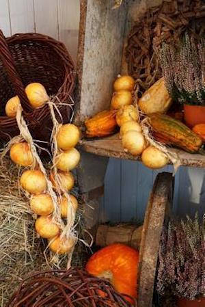 Bog, paperback Autumn Harvest Journal af Cs Creations