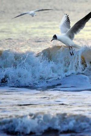 Bog, paperback Seagulls at the Seashore Journal af Cs Creations