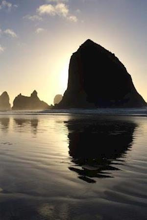 Bog, paperback Website Password Organizer Haystack Rocks Off Shore in Oregon af Unique Journal