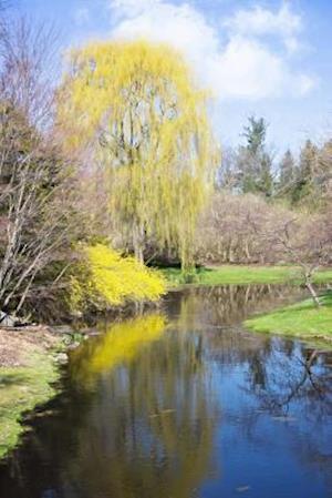 Bog, paperback Springtime on the River Landscape Journal af Cs Creations