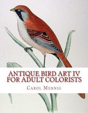 Bog, paperback Antique Bird Art IV - For Adult Colorists af Carol Mennig